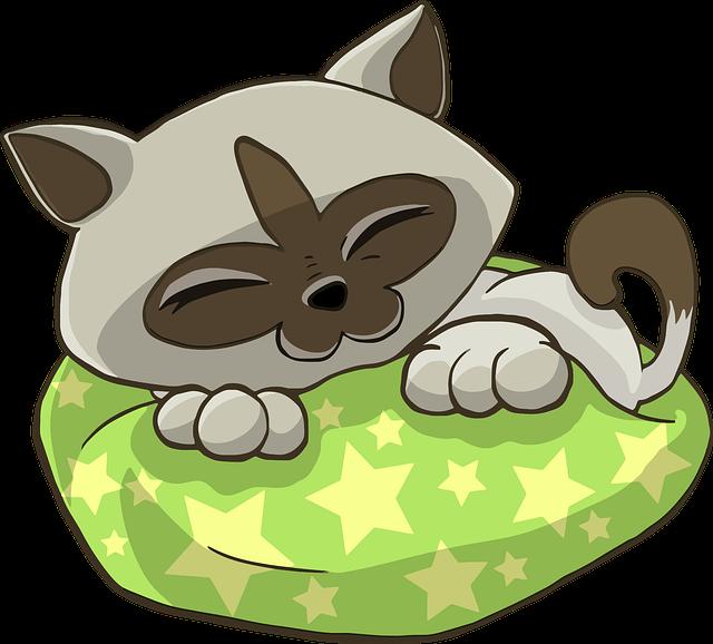 kočka na pelíšku