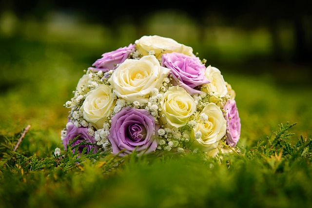 kytice bílých a fialových růží